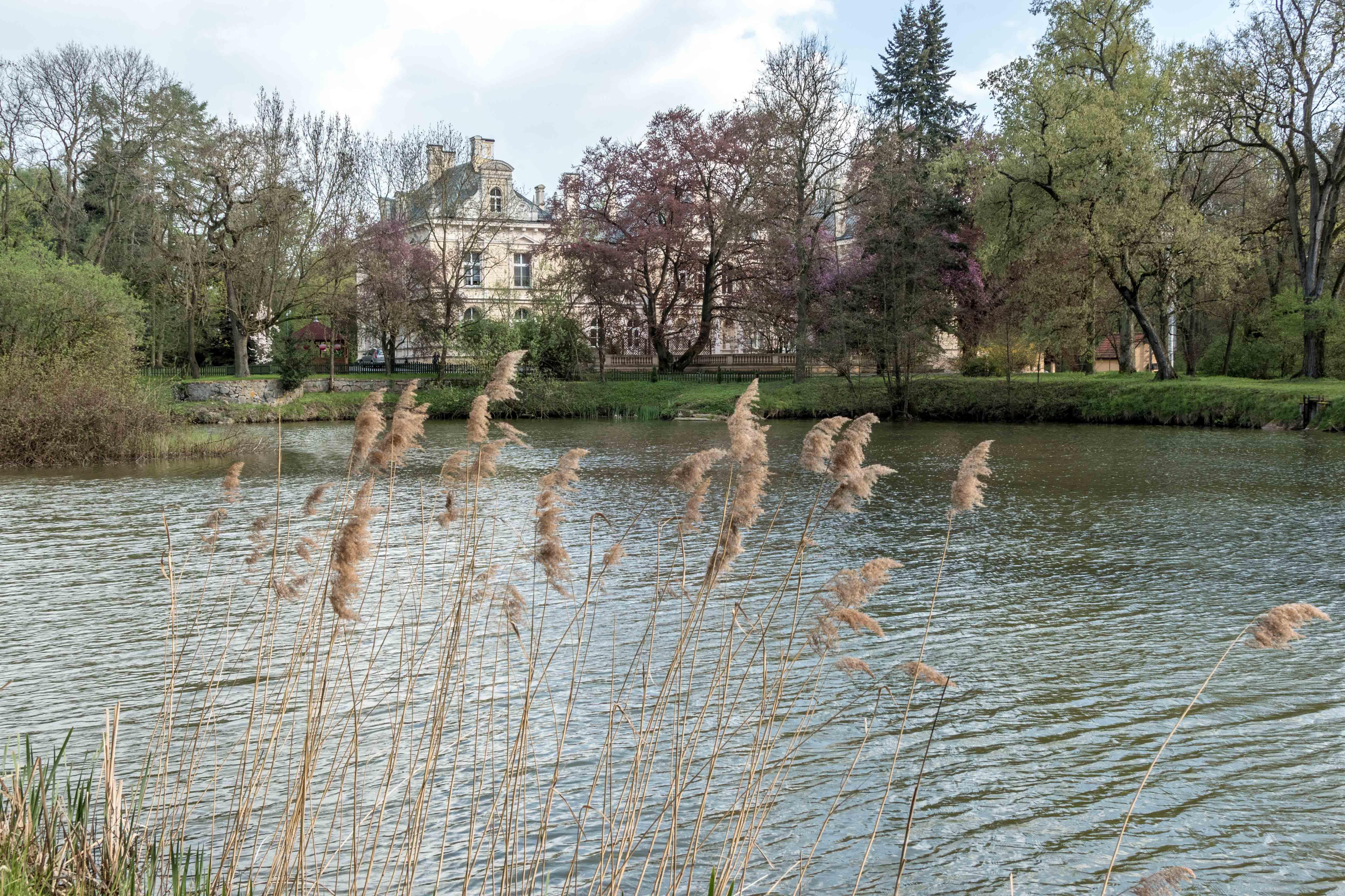 Pałac w Zimnowodzie wiosną