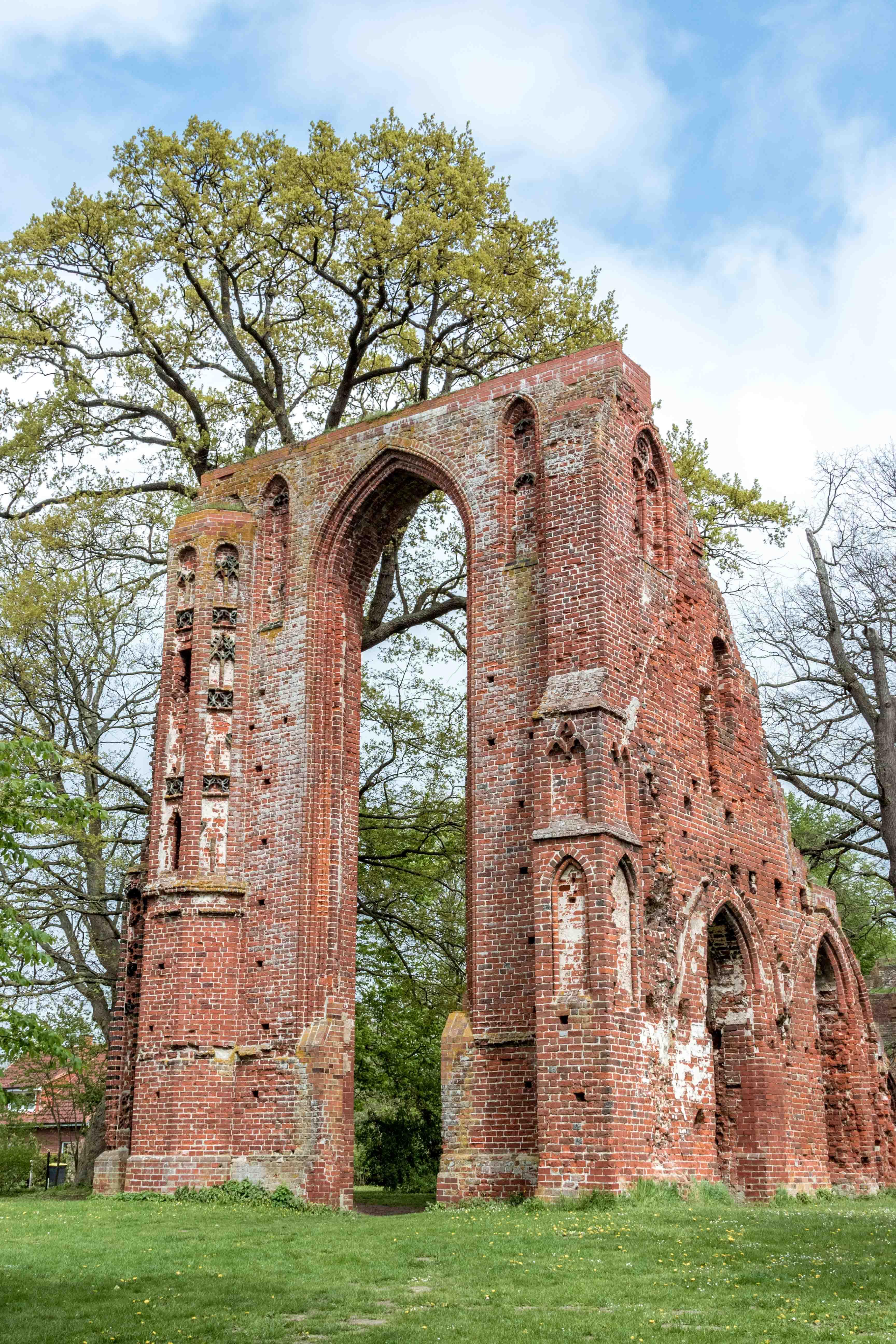 Ruiny klasztoru Eldena