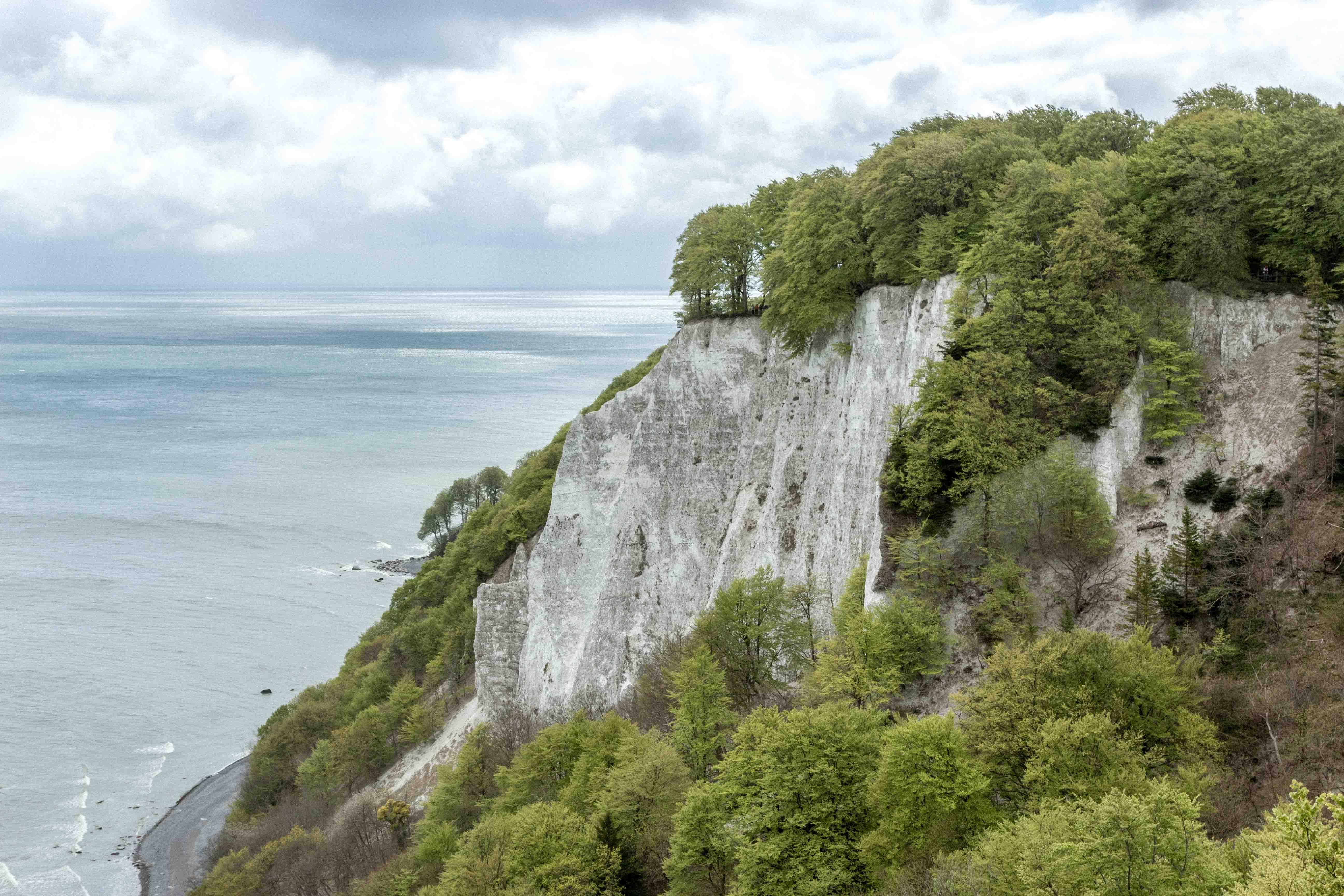 Park Narodowy Jasmund – klify kredowe na Rugii