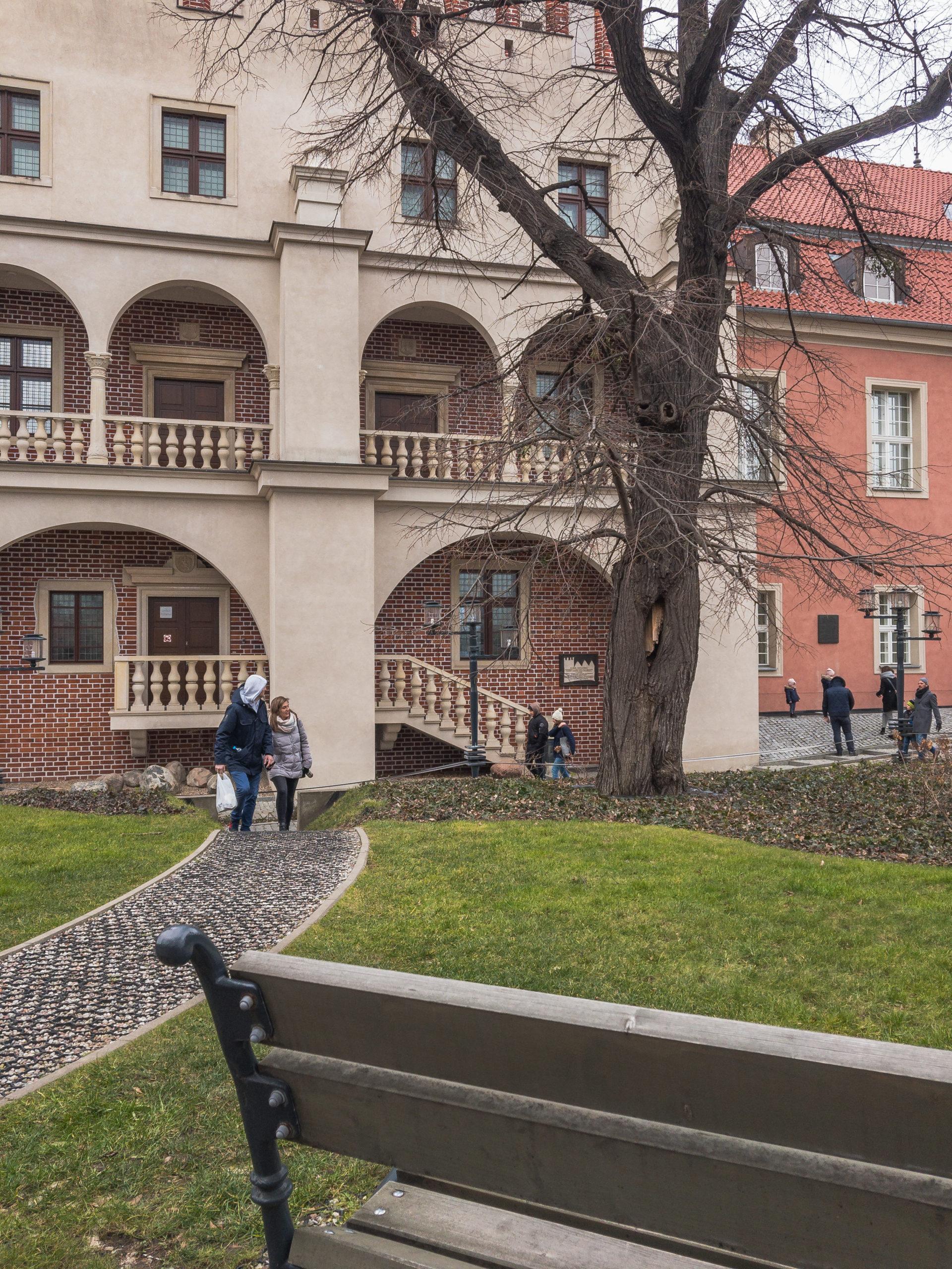 Zamek Przemysła II