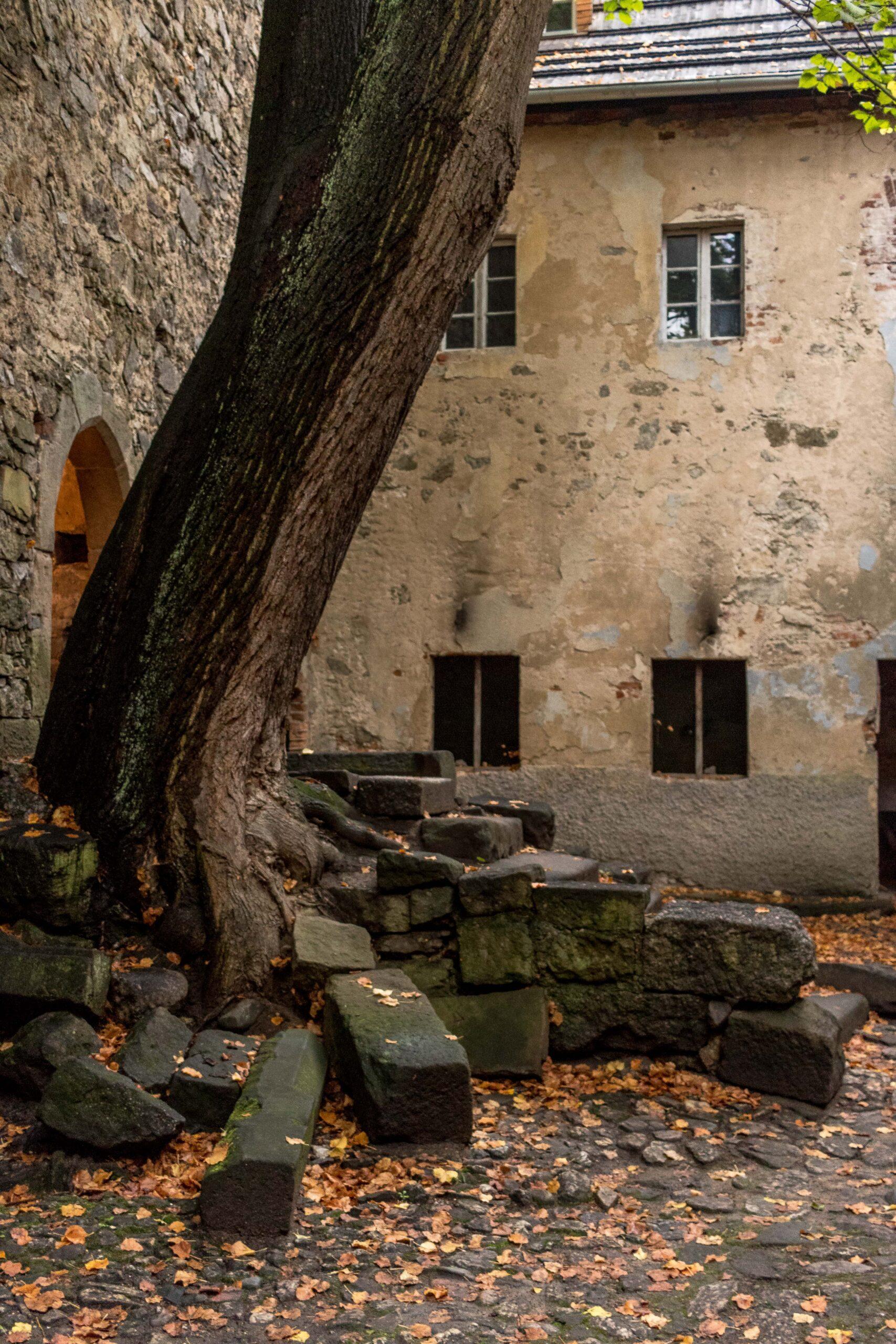 Wieża Książęca w Siedlęcinie