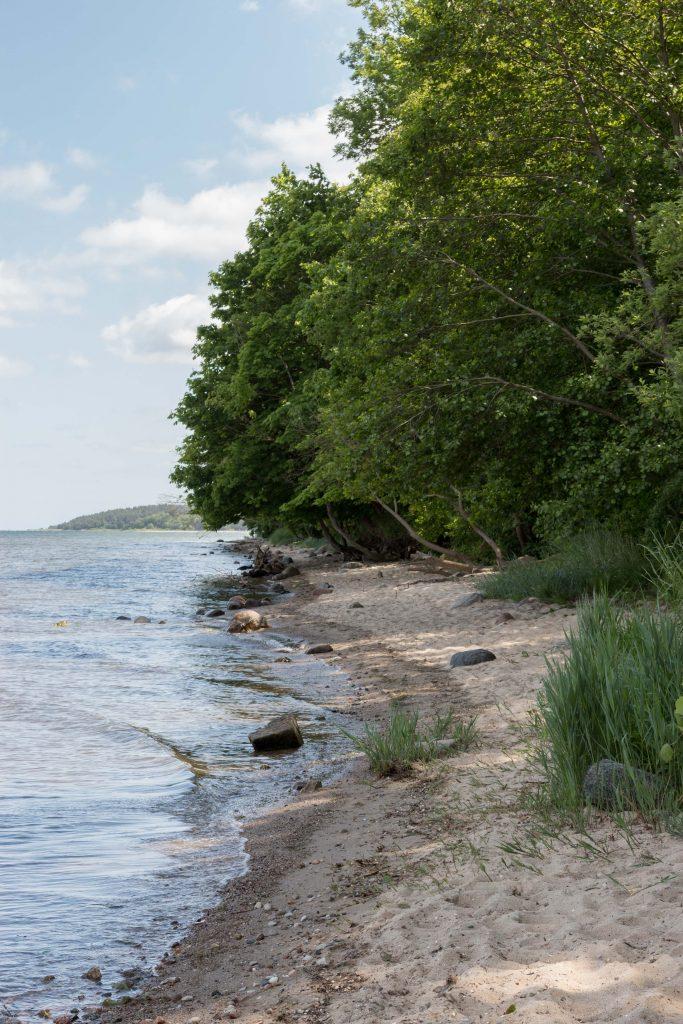 Puck Rozgard plaża