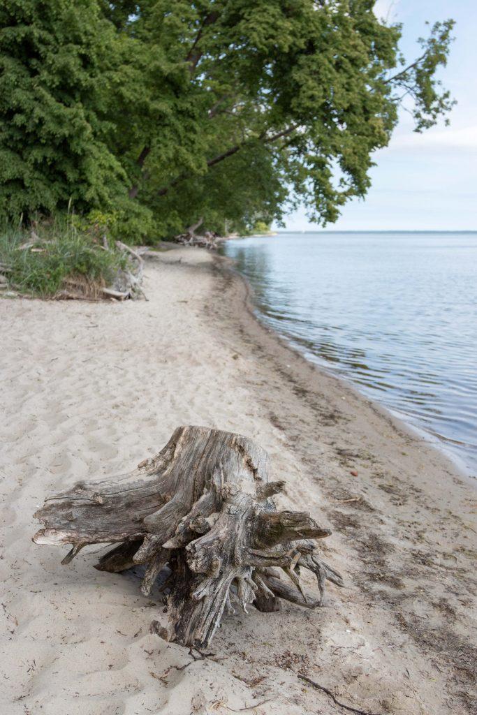 Plaża Rzucewo